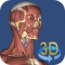 3d-anatomy-3 icon