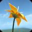 flower-4 icon