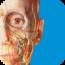 human-anatomy-atlas-2017-edition-complete-3d-human-body icon