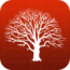 mobilefamilytree-8 icon