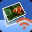 wireless-transfer-app icon